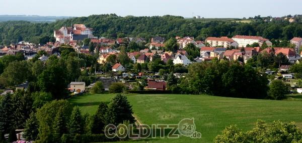 Blick vom Heimatturm auf die Stadt