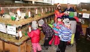Günter Vehlow gibt den neugierigen Kids Einblick in die Welt der Kaninchen