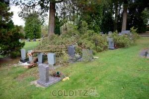 Abgebrochene Äste auf dem Zschirlaer Friedhof