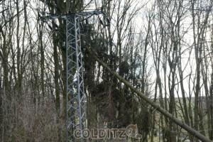 Wieder ein Baum in der 15-kV-Leitung
