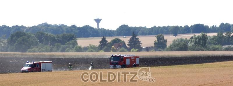 Feldbrand nahe Schwarzbach