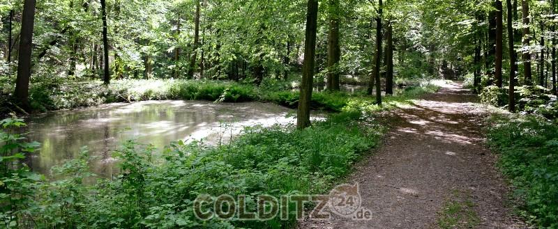 Der Fürstenweg im Colditzer Tiergarten