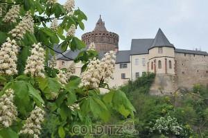 Burg Mildenstein (Foto: D. Thomas)