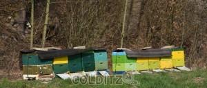 Bienenbeuten am Auenbach