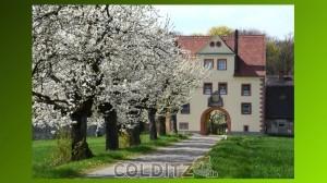 Der historische Tiergarten