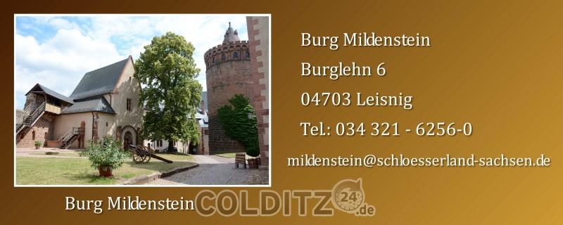 Burg Mildenstein zu Leisnig