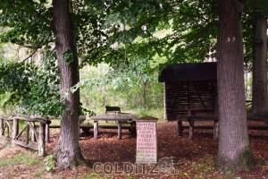 Am Jägerstein im Colditzer Wald
