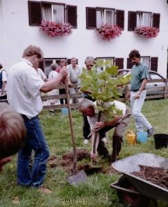 Als bleibendes Geschenk pflanzten Hausdorfer in Demmlers Garten einen Tulpenbaum