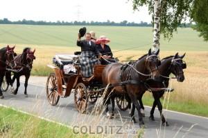 Auch mit Pferd und Wagen ist man gern unterwegs