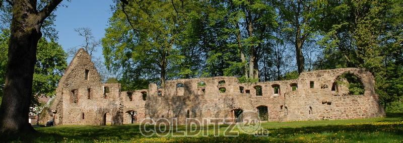 Die Klosterruine Nimbschen bei Grimma