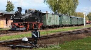 Die Döllnitzbahn in Mügeln...